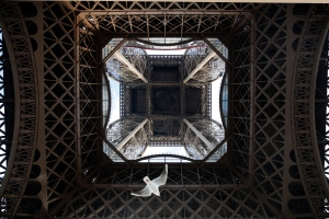 In this Dec. 16, 2016 file photo, a seagull flies under the Eiffel Tower on the fourth day of the strike, in Paris. (AP / Christophe Ena)