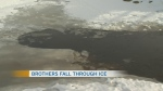 Boy dies after falling through ice