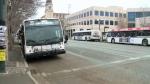 Transit drivers pay tribute