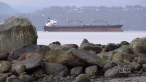 Who's protecting our coast from an oil spill?