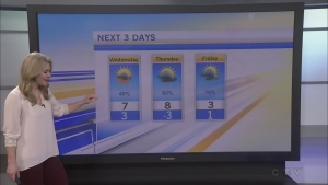 CTV Morning Live Weather Feb 22
