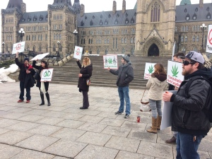 Pot activist Jodie Emery leads a protest on Parliament Hill on Wednesday.