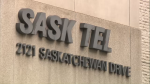 Petition seeks to prevent possible sale of SaskTel