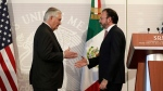 U.S. Secretary of State Rex Tillerson, left, shakes hands with Mexico's Foreign Relations Secretary Luis Videgaray at the Foreign Affairs Ministry in Mexico City, on Feb. 23, 2017. (Rebecca Blackwell / AP)