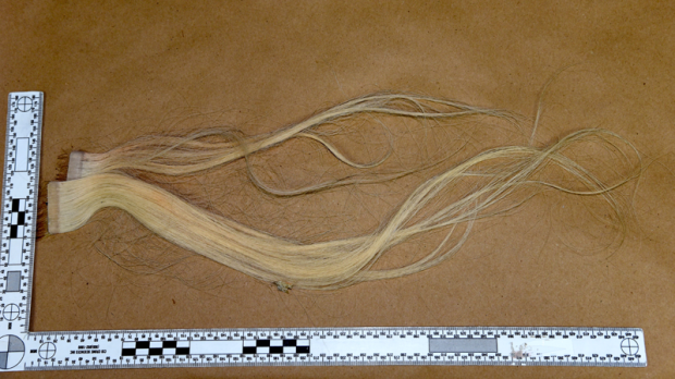 Authorities are trying to find a woman witnesses saw being attacked in Vancouver's west side on Feb. 17. They believe someone might recognize hair extensions they found at the scene. (Handout)