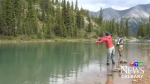 Lesley Peterson, Biologist with Trout Unlimited will be in to talk about Whirling disease and what it means for the Bow River and Albertans this summer