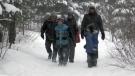 CTV Northern Ontario: Winter Survival