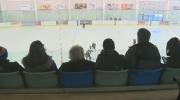 Hockey Edmonton suspends number of parents