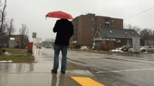 A rainy day in Windsor, Ont., on Feb. 7, 2017. (Melanie Borrelli / CTV Windsor)