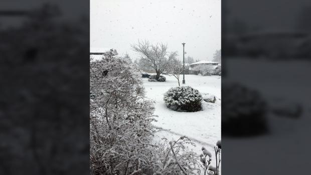 central saanich snow