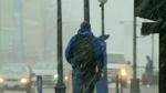 Surprise snow: Never-ending winter strikes again