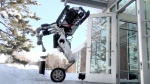 'Nightmare inducing:' Boston Dynamics' 'Handle'
