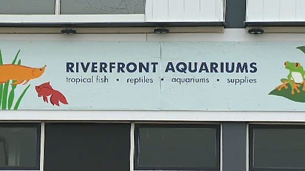 The owner and general manager of the former Riverfront Aquariums have been given big fines by a Calgary judge.