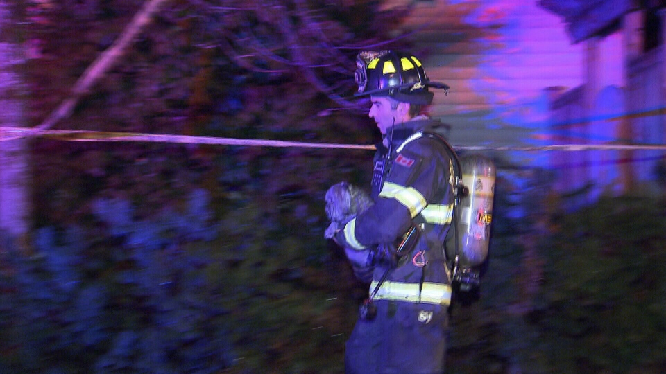 Firefighters carried the rescued dog out of the burning home and used a special oxygen mask on it. (CTV)