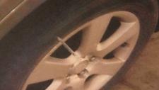 needle in car