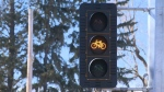 Special Traffic Lights