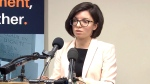 Niki Ashton says she is expecting twins in early November.