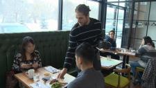 Cafe Linnea