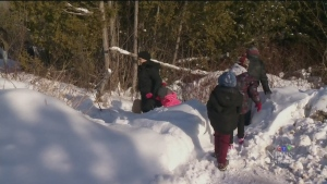 CTV Montreal: What happens to asylum seekers?