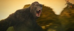 This image released by Warner Bros. Pictures shows a scene from, 'Kong: Skull Island.' (Warner Bros. Pictures)