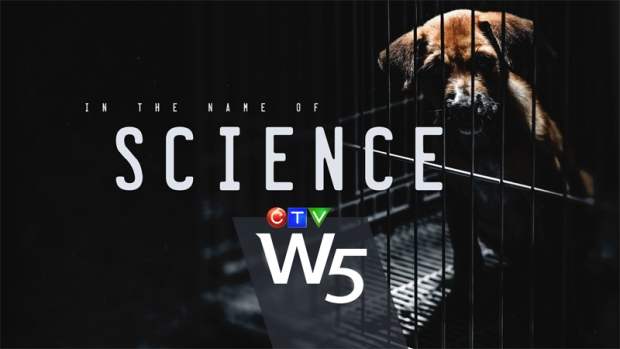 W5: In the Name of Science