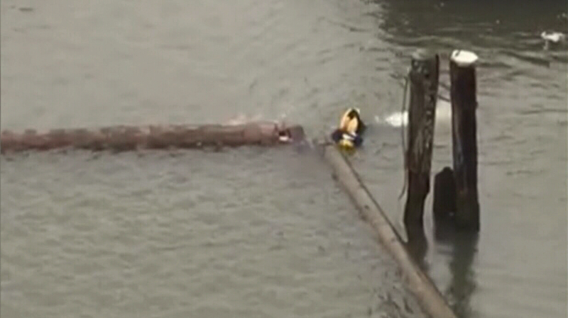 Const. Justin Lee didn't hesitate to leap into frigid waters of the Fraser River to rescue a woman in distress.
