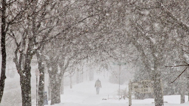 Total snowfall amounts of 15 to 25 centimetres are expected in most areas. (File image)