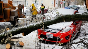Workers clear debris after a tree branch fell on a parked car in Baltimore, Tuesday, March 14, 2017, as a winter storm moves through the region. (AP Photo/Patrick Semansky)