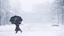 Ontario winter storm