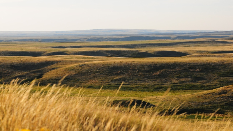 Grasslands National Park is seen in this file image. (Supplied)