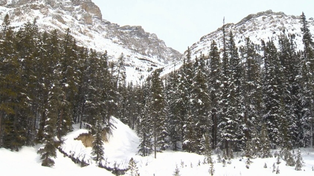 Special public avalanche warning issued for mountain parks