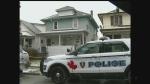 Fatal shooting on Elsmere Avenue in Windsor