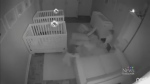 Baby monitor catches secret twin party