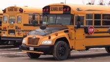 School buses can be seen in this undated photo. (CTV Barrie)