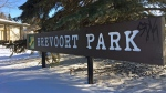 On the Block: Brevoort Park