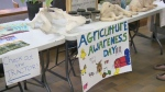 Agriculture awareness day - Lethbridge