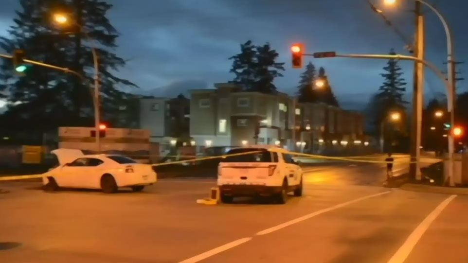 Driver arrested after fatal crash in Surrey | CTV News