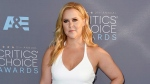 In this Jan. 17, 2016, file photo, Amy Schumer arrives at the 21st annual Critics' Choice Awards in Santa Monica, Calif. (Photo by Jordan Strauss/Invision/AP, File)