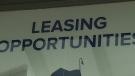 leasing-opportunities