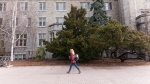 A student walks on the campus of the University of Guelph on Friday, March 24, 2017. (THE CANADIAN PRESS / Hannah Yoon)