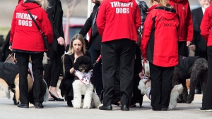Therapy dogs help mourners following the funeral service for 7-year-old Nathan Dumas in Thorold, Ont., on Friday, March 24, 2017. (THE CANADIAN PRESS/Aaron Lynett)