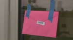 The pink envelopes were placed around Antigonish on Saturday, with anywhere from $5 to $20 dollars inside.
