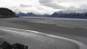 FILE - In this March 7, 2016, file photo, a ribbon of water cuts through the mud flats of Cook Inlet, just off the shore of Anchorage, Alaska. (AP Photo/Mark Thiessen)