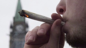 Marijuana is expected to be legal in Canada by July 1, 2018. (Adrian Wyld/The Canadian Press)