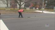 pedestrian struck, scarborough