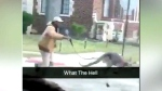 A man took a kangaroo for a walk in Detroit
