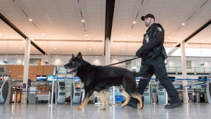 A police officer and his dog patrols Montreal's Pierre Elliott Trudeau International Airport on March 22, 2016. (Paul Chiasson / THE CANADIAN PRESS)