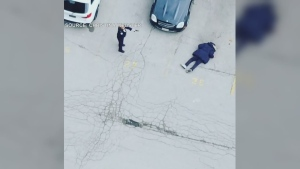 In a video provided by a viewer, a Toronto police officer can be seen pointing her firearm at a suspect as he lays on the pavement. (Source: Christina Webster)
