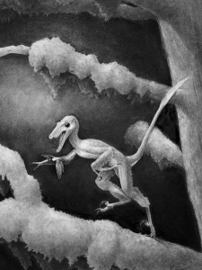 This undated handout black-and-white artist rendering provided by the Proceedings of the National Academy of Sciences shows a life reconstruction of Hesperonychus elizabethae chasing a cicada through a forest in Alberta, Canada 75 million years ago. (UNDATED HANDOUT BLACK-AND-WHITE ARTIST REDERING PROVIDED BY THE PROCEEDINGS OF THE NATIONAL ACADEMY OF SCIENCES / CANADIAN PRESS)