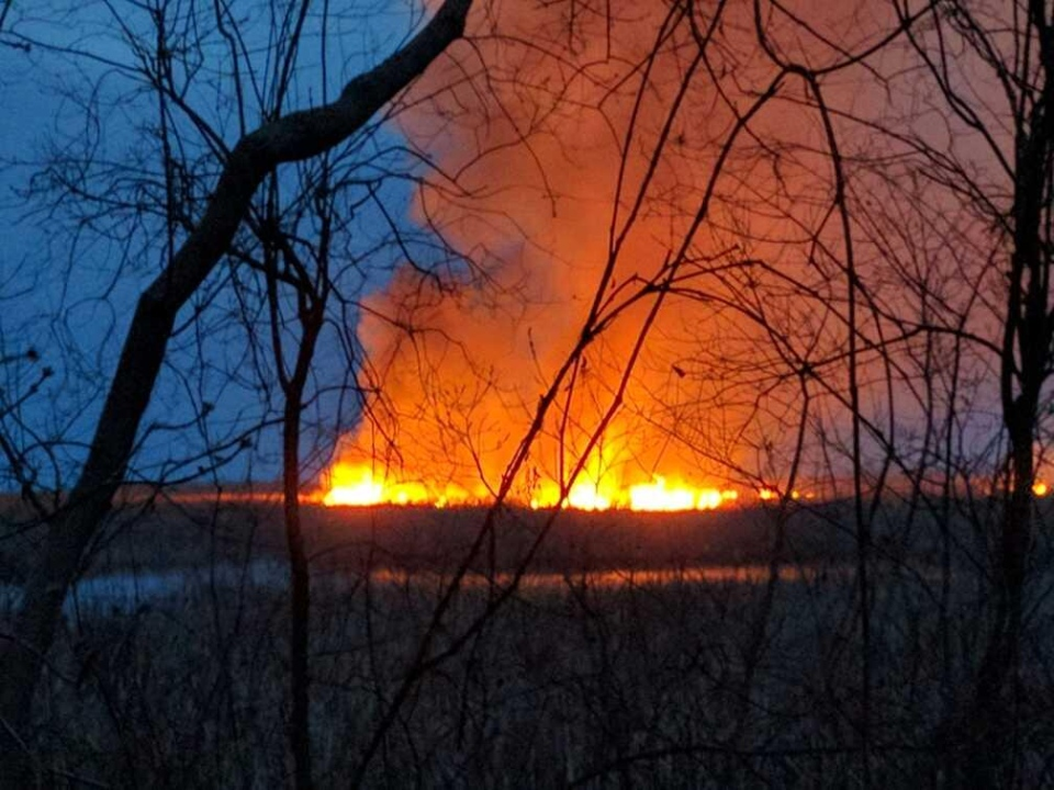 Flames could be seen from kilometres away as a marsh fire burned at Point Pelee National Park on Wednesday, March 29, 2017. (Courtesy Alan Antoniuk)